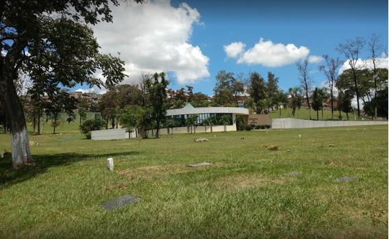 Jazigo No Parque Da Colina