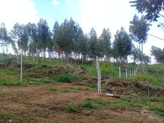 14c : Terreno Para Veraneio