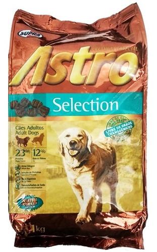 Imagen 1 de 2 de Comida Perro Adulto Astro Selection 1 Kg  / Mundo Mascota