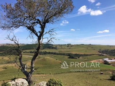 Fazenda - Cazuza Ferreiro - Ref: 10589 - V-10589