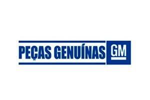 Manual - Gm 98550180