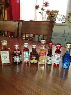 Botellas De Colección Miniatura 8
