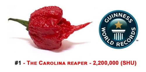Imagem 1 de 4 de Sementes De Pimenta Carolina Reaper - Mais Ardida Do Mundo!