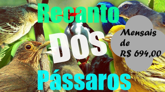 06 C - Terreno Para Chácaras