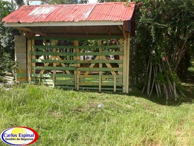 Campito Rancho De Venta En República Dominicana Cc-034