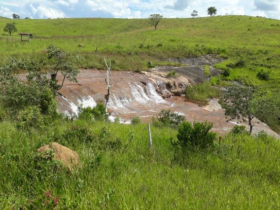Fazenda Com 289 Hectares No Sul De Minas , Com Cachoeira Dentro Da Fazenda - 475