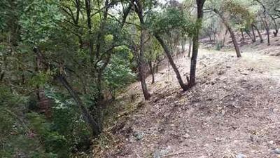 6768 El Barrial Carretera Nacional Terreno Campestre