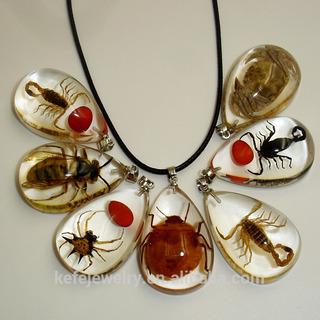 Resina Epoxica Encapsulado De Insectos