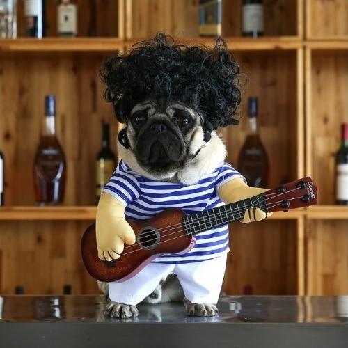 Disfraz Perro Guitarrista Cachorro Cosplay - Talla M