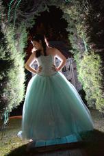 Alquiler De Vestido De Fiesta De 15 Años