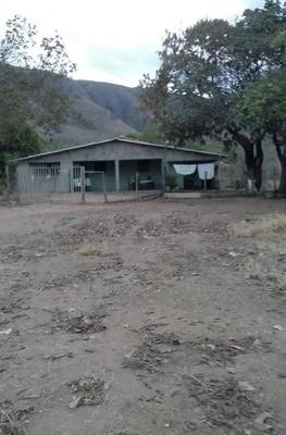 Fazenda Em Centro, Formosa/go De 100m² 4 Quartos À Venda Por R$ 1.799.900,00 - Fa239024