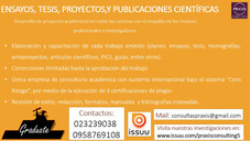 Asesoría De Tesis De Grado, Tfm, Ensayos Y Papers