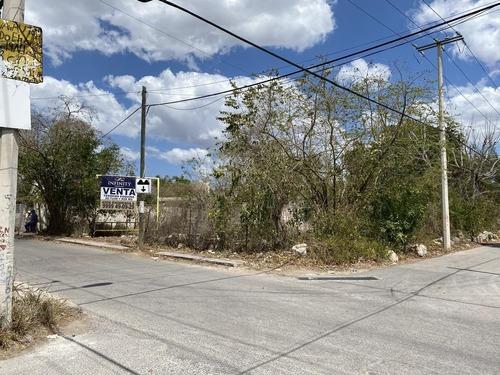 Terreno En Avenida, Esquina A Tan Sólo Dos Cuadras Del Parque- Pueblo Cholul
