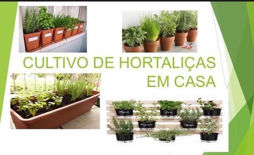 Imagem 1 de 2 de Ebook Digital Horta Caseira De Sucesso