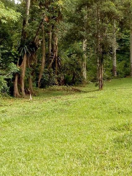 Rural Para Venda, 5 Dormitórios, Jardim Tomé - Embu Das Artes - 169