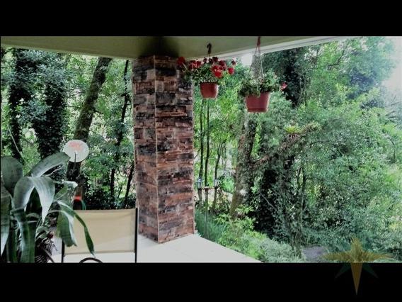 Casa No Bairro Palace Hotel Em Canela, Rs - 134 - 4460631