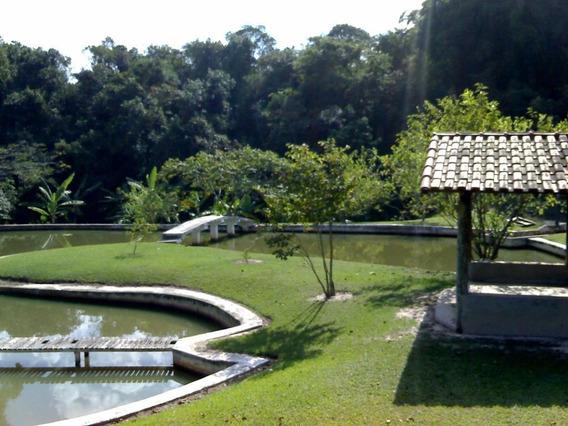 Chácara Em Vertentes Das Águas, São Pedro/sp De 165m² 3 Quartos À Venda Por R$ 560.000,00 - Ch421053