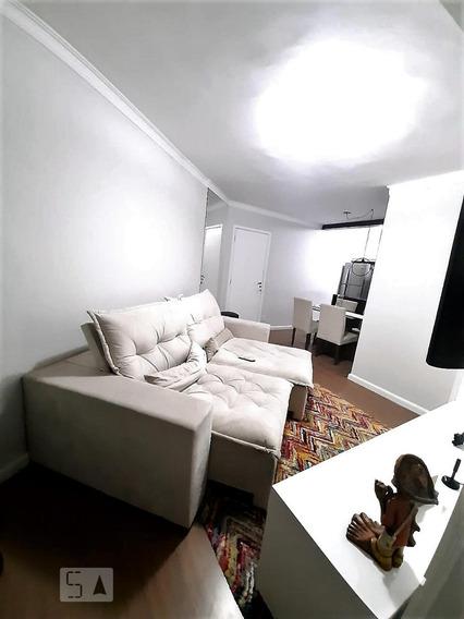 Apartamento Para Aluguel - Parque Monte Alegre, 2 Quartos, 51 - 893081741