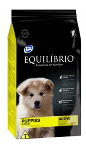 Imagen 1 de 1 de Equilibrio Cachorro Mediano 18kg + Envio En 24h + Regalo