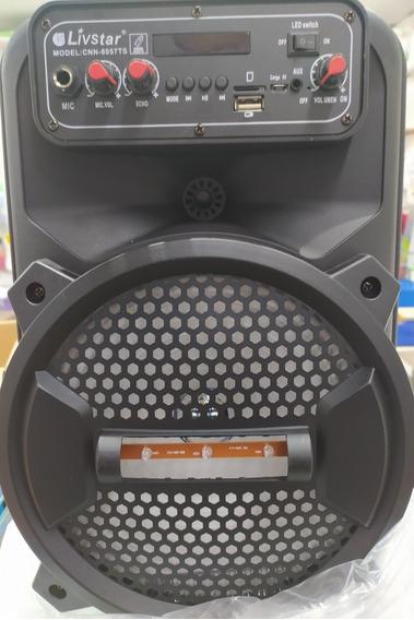 Caixinha E Amplificador De Som Portatil