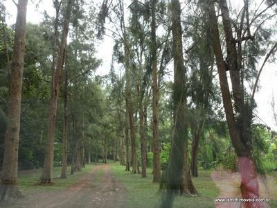 Terreno Para Venda, 0.0 M2, Jardim Caiapiá - Cotia - 1213