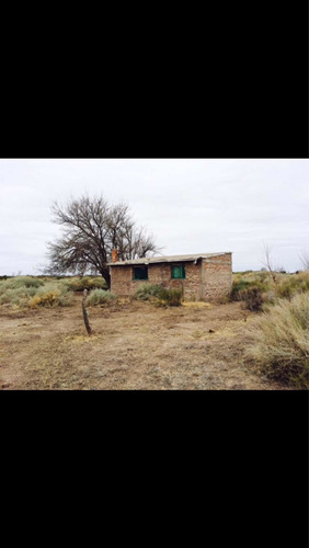 Imagen 1 de 7 de Finca Campo En Mendoza General Alvear 300 Hectareas C/riego