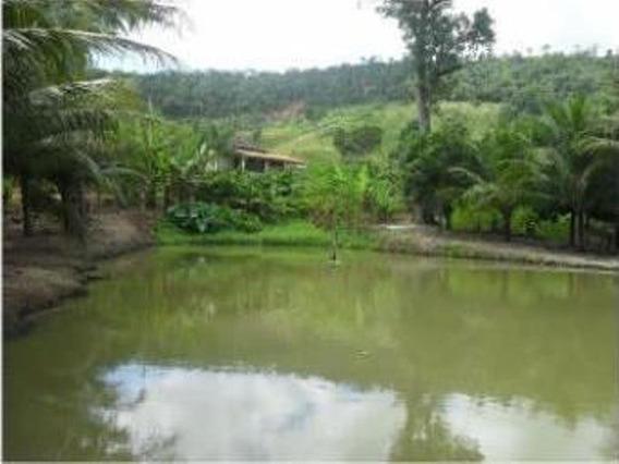 Sitio Com 270 Mil M² Na Região Rural De Itaguaçu - Dni33