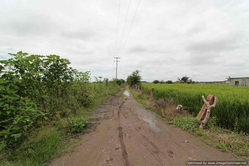 Terreno Urbano En Chiconcuac / Xochitepec - Est-172-tu