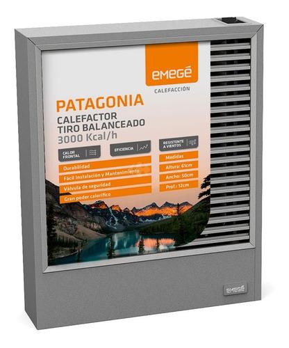 Imagen 1 de 5 de Calefactor Emege Patagonia Ce9030b 3000 Kcal Tiro Balanceado