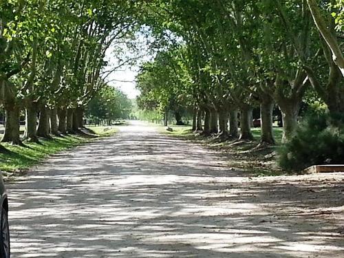 Estancia Villa Maria. Lotes Únicos E Inigualables.