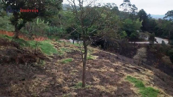Terreno Residencial À Venda, Chácaras Boa Vista, Santana De Parnaíba - Te0179. - Te0179