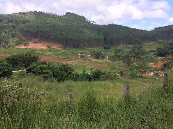 Fazenda Centenária Em Belmiro Braga;próximo À Rio Das Flores
