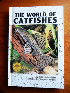 Acuarios: El Mundo De Los Bagres - The World Of Catfish