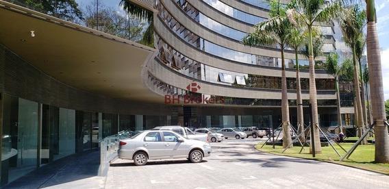 Loja À Venda - Área Hospitalar - Santo Agostinho - 16287