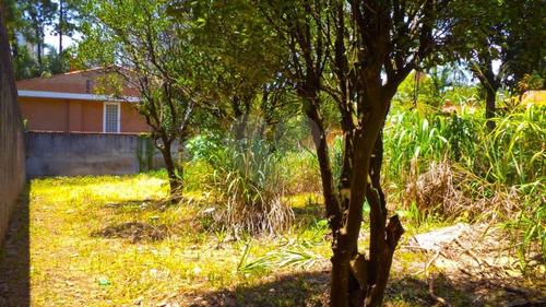 Imagem 1 de 20 de Terreno No Jardim Marajoara - Local Nobre! - Reo48952