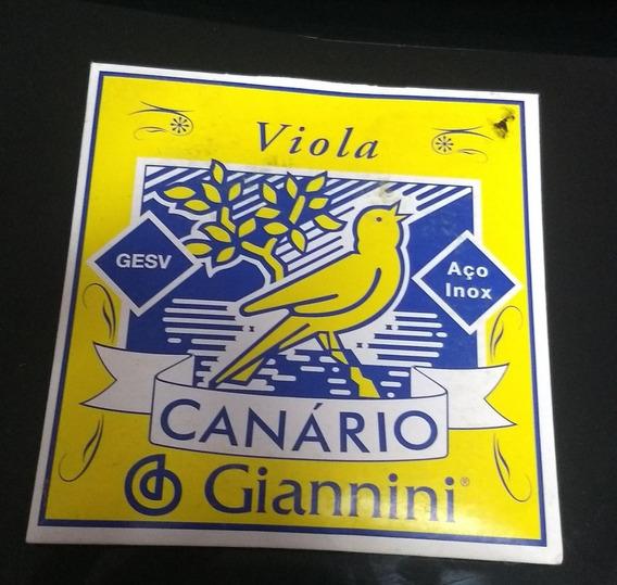 Encordoamento Viola 10 Cordas Giannini 011 Gesvb Outlet