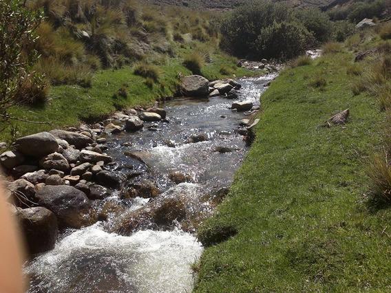 Se Vende Terreno Rural, Pastizales Naturales Y Agua Propia