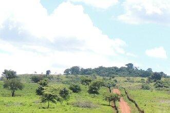 Fazenda Rural À Venda, Perto Da Cafeândia, Goianésia.