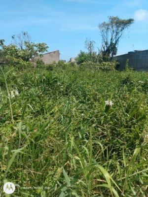 Imagem 1 de 1 de Terreno No Bairro Oásis, Em Itanhaém, Litoral Sul  7986