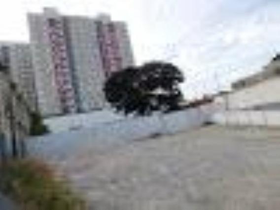 Terreno Para Alugar - Centro - Jundiaí/sp - Te0330 - 34731047