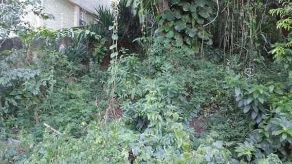 Terreno Para Venda Em Rio De Janeiro, Jardim Guanabara - Ilha Do Governador - 803940