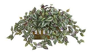 Nearly Natural 8056 Wandering Jew Decorative Planter Artif