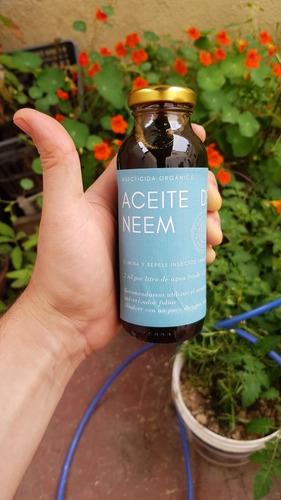 Aceite De Neem Puro Envase Retornable Al 2 % Rinde 125 Lts