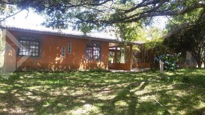Sitio - Aguas Claras - Ref: 212603 - V-212603