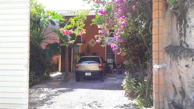 Alquilo Bellos Apartamentos En Los Adobes Alajuela Centro