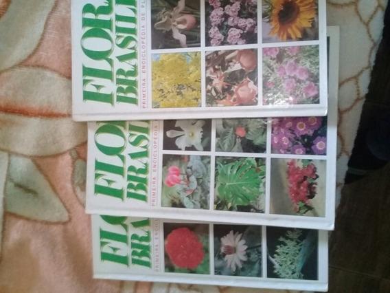 Enciclopédia De Plantas Do Brasil