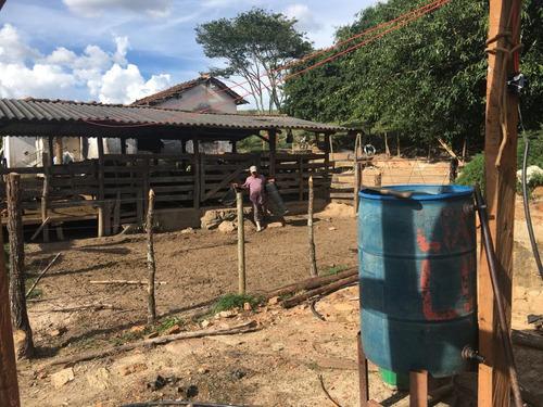 Fazenda À Venda, 216 Hectares Por R$ 3.500.000 - Zona Rural - Tapira/mg - Fa0001