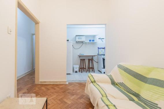 Apartamento Para Aluguel - Santa Teresa, 1 Quarto, 110 - 892953533