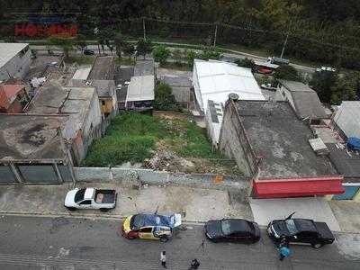 Excelente Terreno No Jardim Dos Eucaliptos - Caieiras - Te0271