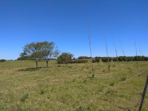Chacra En Rincón De José Ignacio, La Zona Más Codiciada- Ref: 4237